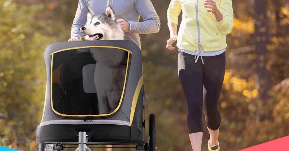Best Dog Stroller for Jogging - Puplore