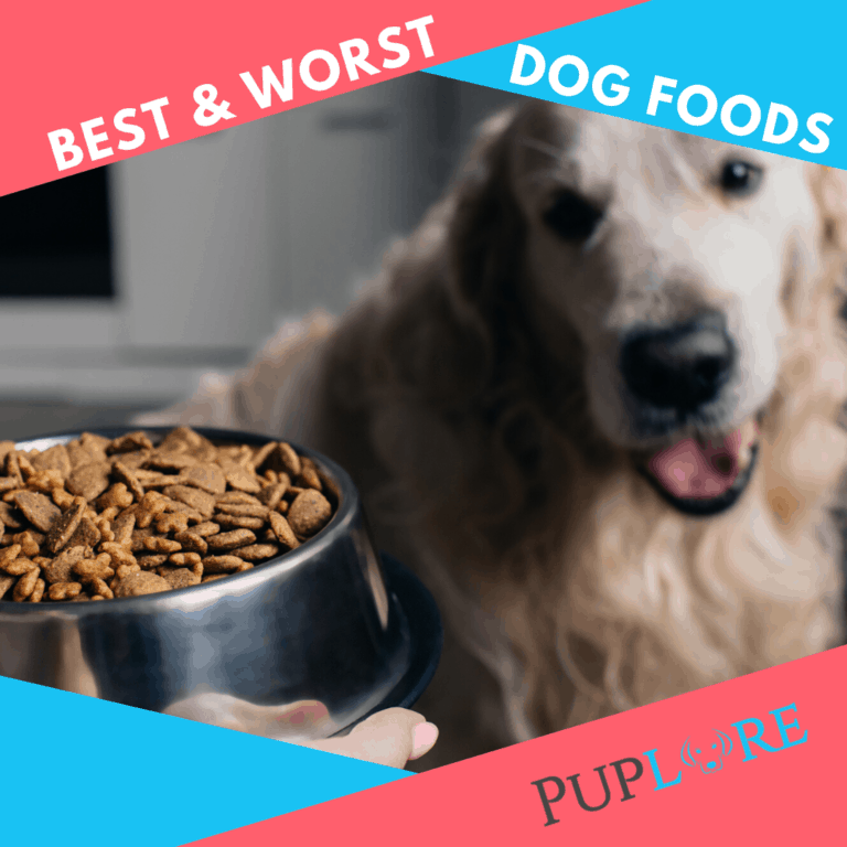 16 Worst Dog Food Brands to Avoid in 2021 [+16 Top Choices]
