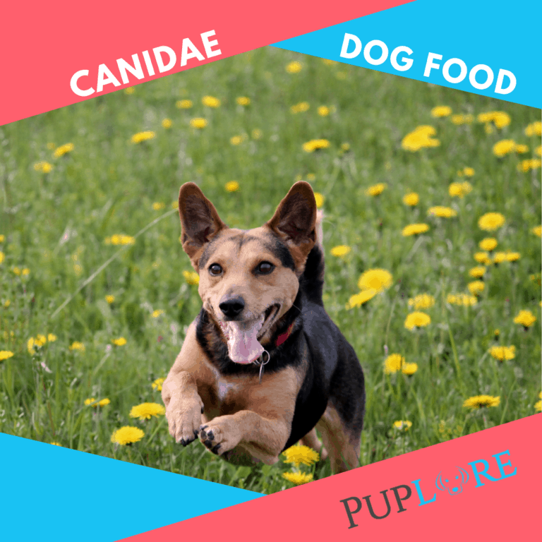 Canidae Dog Food Reviews [July 2021] Made in the USA