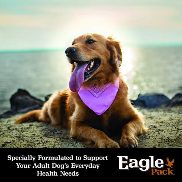 Eagle Pack Dog Food Review