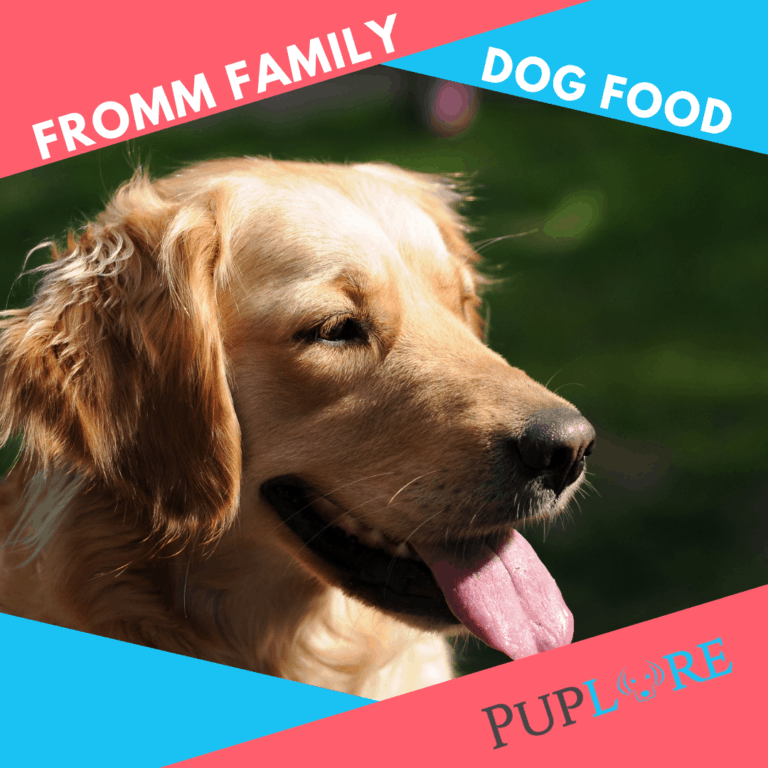Fromm [Gold] Dog Food Reviews Updated for 2021