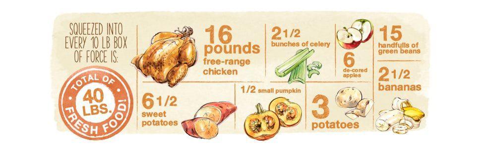 Honest Kitchen Grain Free Ingredients