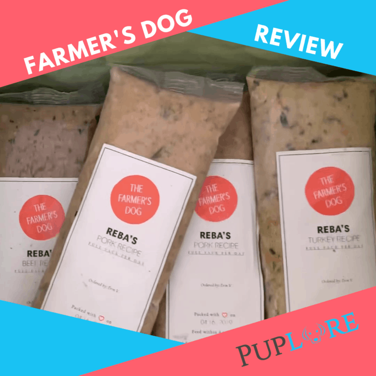 The Farmer's Dog Food Review 2021: Will Reba Approve?