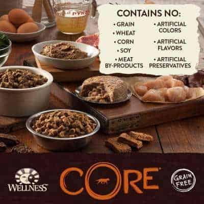 Wellness Core Dog Food Ingredients
