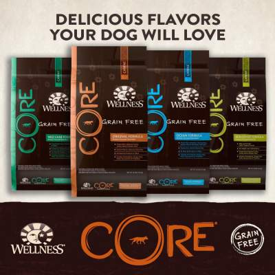Wellness Core Dog Food Review